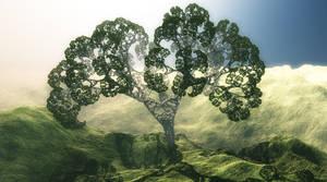 Tree by C-JR