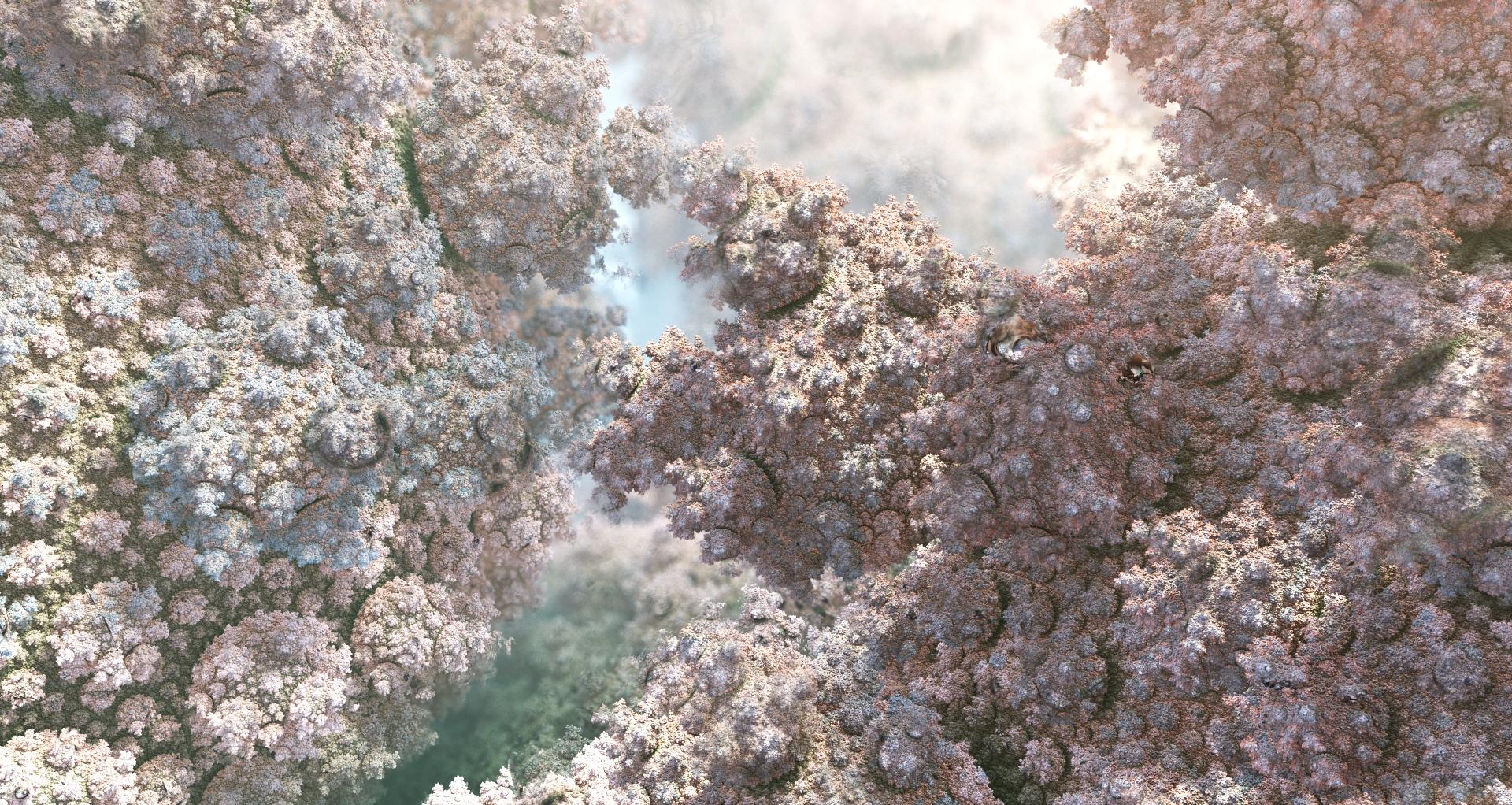 Coral reefs by C-JR