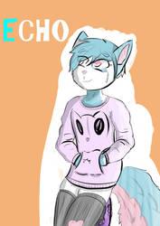 Echo Redone