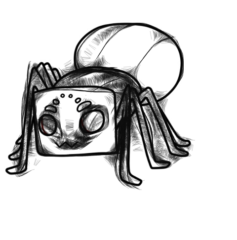 spider by travisbernard