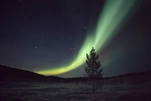 Auroraborealis by Sokklei