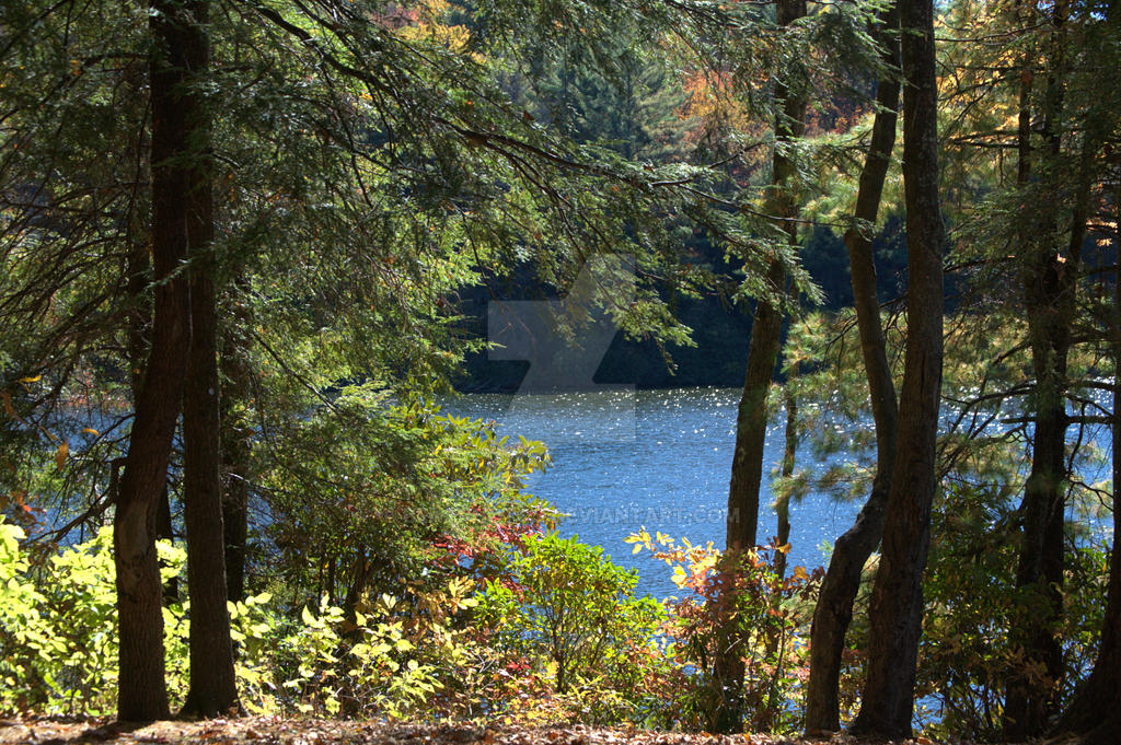 conasauga chat sites Campground list campground name: andrews cove visit date: 05/10/1997 update date: 1/31/2017 the word conasauga, is the cherokee word for grass.