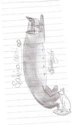 Safira Cat by Bellastet