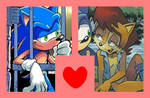 Couple Meme ~ Sonic and Sally
