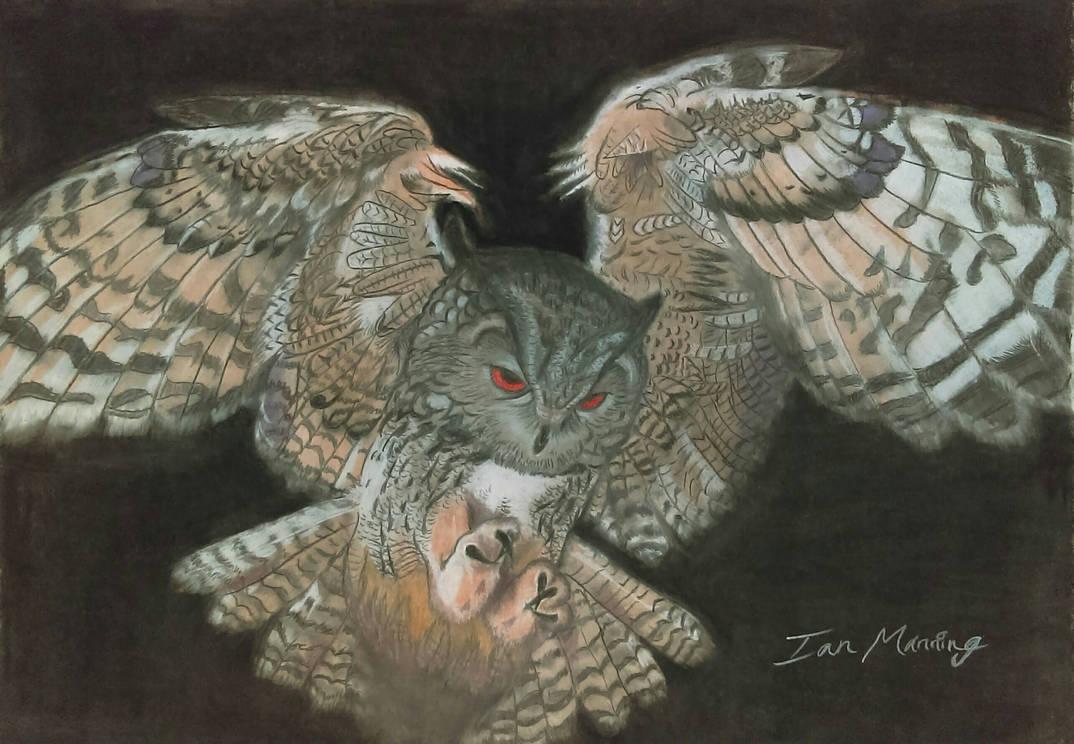 Flying Owl (pastel)