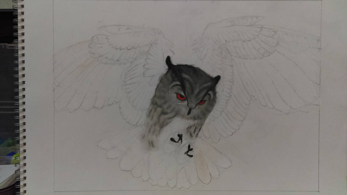 Flying Owl (pastel)