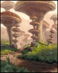 Mushrooms again