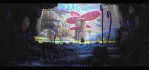 Explorer by UnidColor