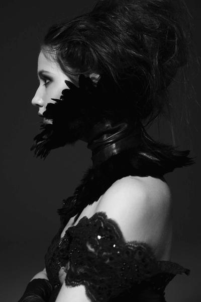 The Raven by corvus-crux