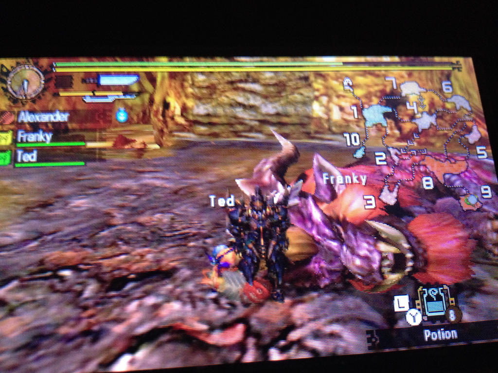 Teostra taken out by TheBigMan0706