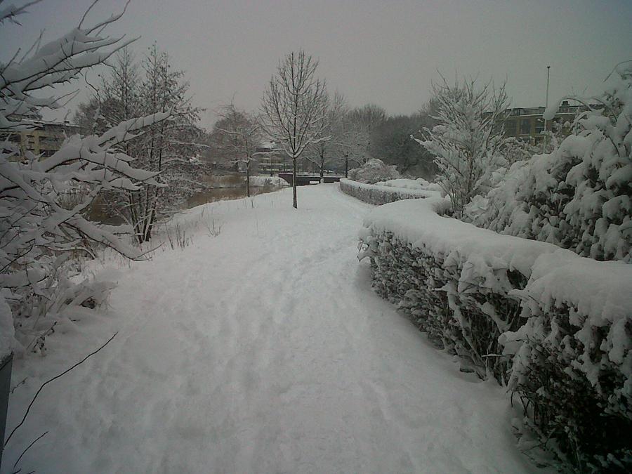 Snowy Trail by Copernibulge (Photo)   Weather Underground
