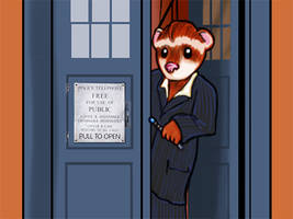 Doctor Who Ferret -1 by Spirallee