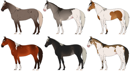 Horse Adopts | 1 / 6 [OPEN]