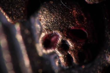 Skull by utarefsonsan