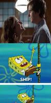 SpongeBob Ships Shea