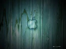 Wood apple by Lumir79