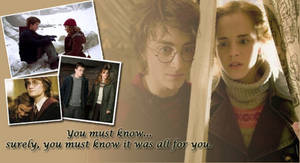 Harry Potter, Hermione Granger