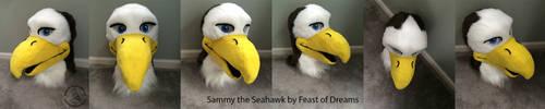 Sammyheadturnaround by theassassinnox