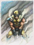 Wolverine drawn in Copic Markers