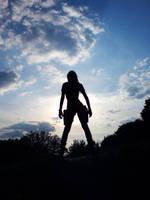 LaraCroft - Silhouette2 by TanyaCroft