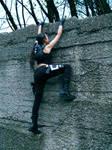 Lara Croft - obstacle