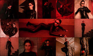 CATSUIT [2014] pack of 13 photos
