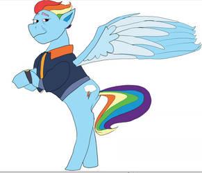 Older Rainbow Dash