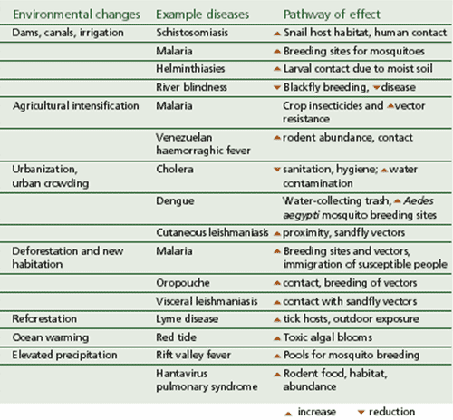 Infectious Diseases Table By Harm Minimisation On Deviantart