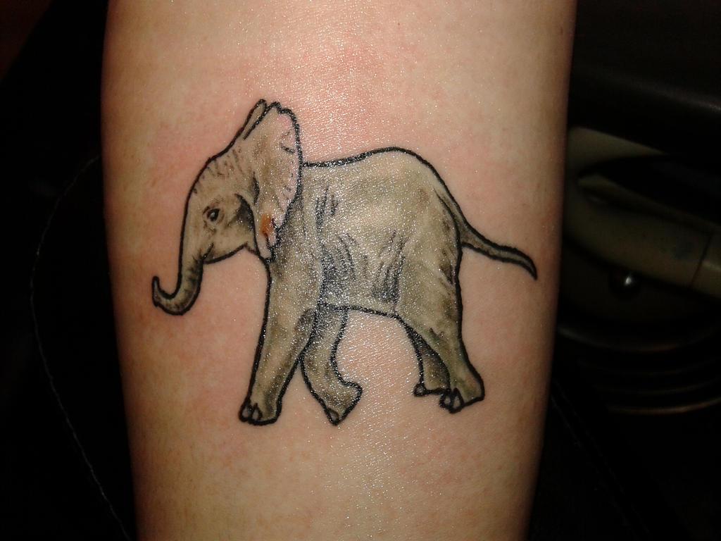 baby elephant by SputnikJr