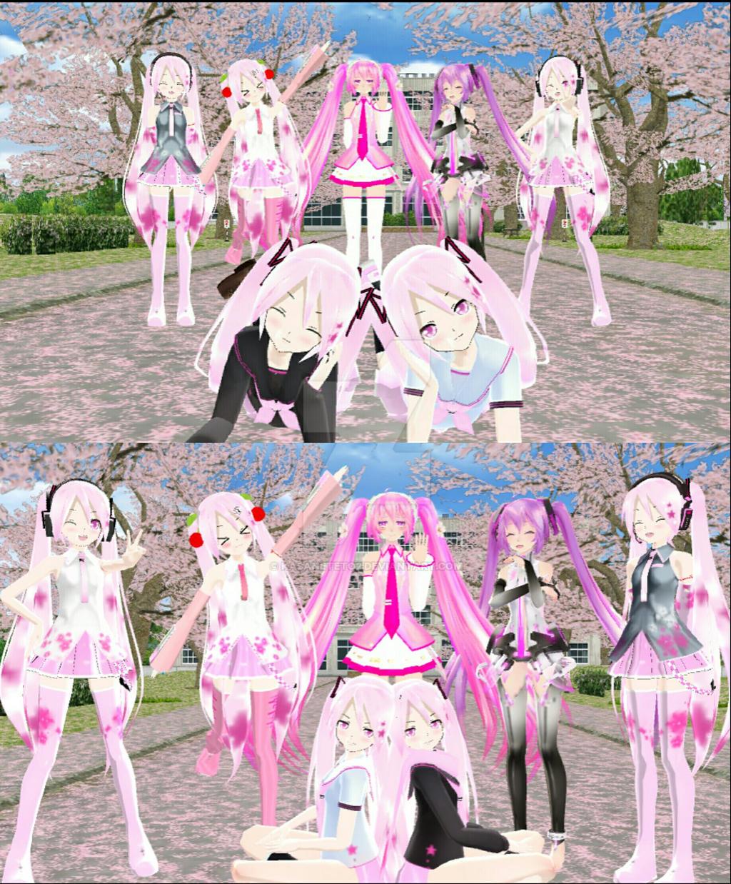 My sakura model collection by KasaneTeto2