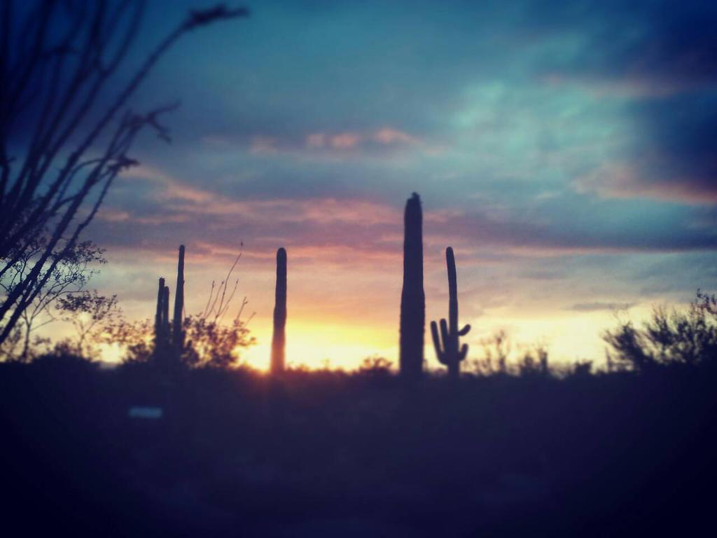 Arizona Evening Sky by WanderinAZ