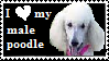 Male Poodle Stamp