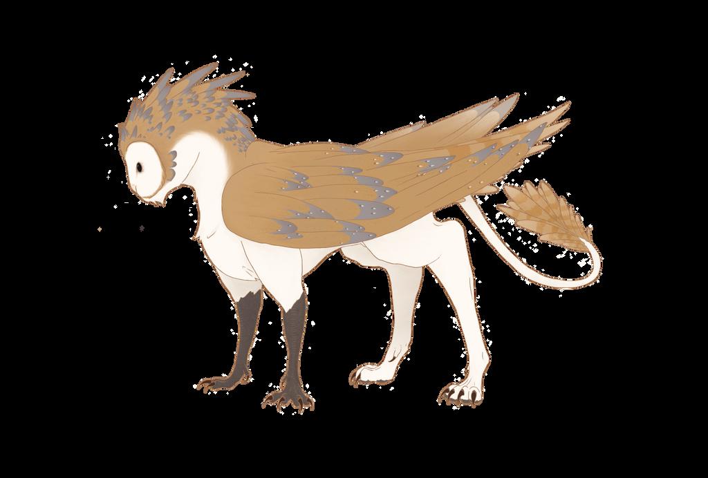 Olfie  Barn Owl Gryphon By HexFox On DeviantArt