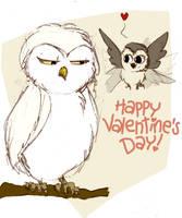 Valentine's Day Coloured