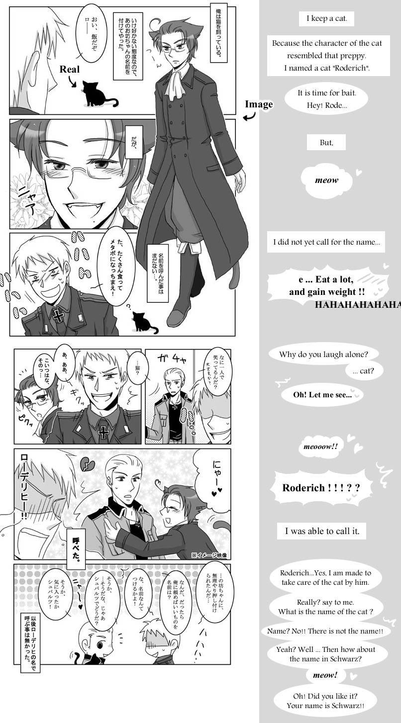 APH - Prussia kept a cat by taku1