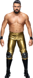 Andrade (2019) Stats PNG by DarkVoidPictures