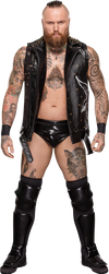 Aleister Black (2019) Stats PNG by DarkVoidPictures