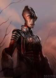 Mass Effect Medieval by DaveRapoza
