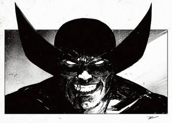 Wolverine by DaveRapoza