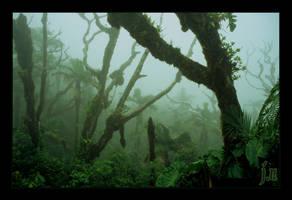 Elfin forest by Sonik-Sheep