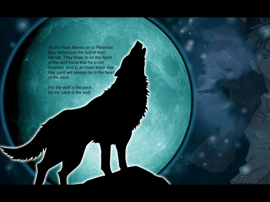 Wolf Quotes And Poems Wolf Pack Poems Wolf Quotes And Poems