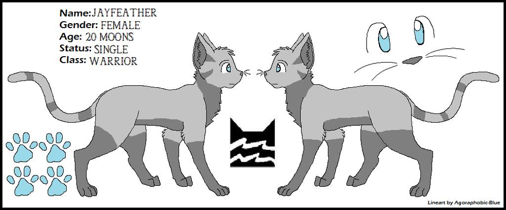 Warrior Cats Apprentice Training