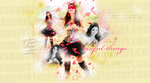 Sel Header for useful-things