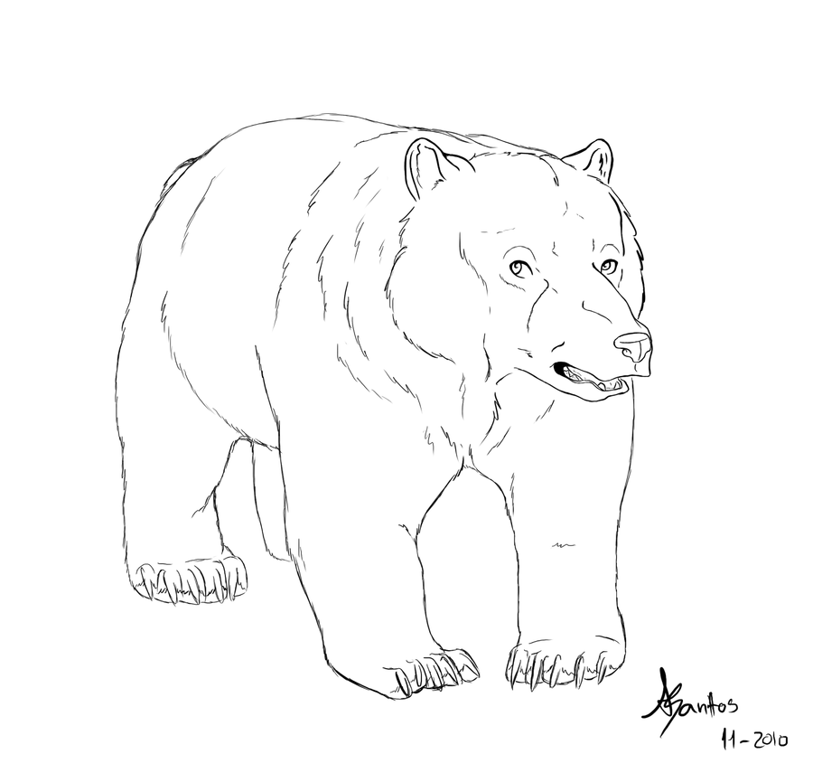 free bear lineart by bloodedlunacy on deviantart rh bloodedlunacy deviantart com bear line art bear linear actuator 12v lubrication