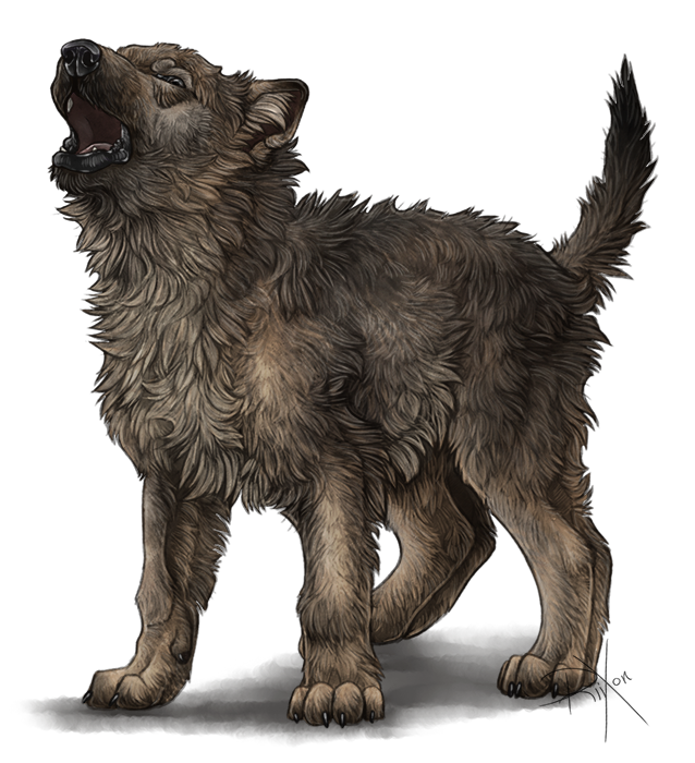 upcoming wolf sim preview video by riixon on deviantart