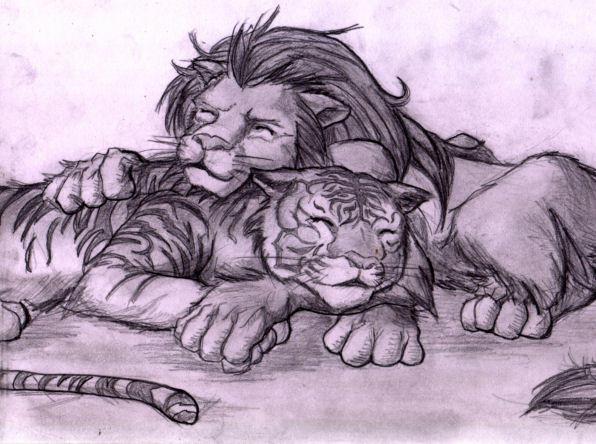 Tiger Vs Lion Drawing