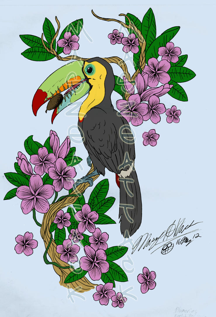Toucan Tattoo coloured by Maszeattack