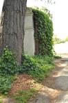 MontsalvatShoot Gardens2 by gin7gin8