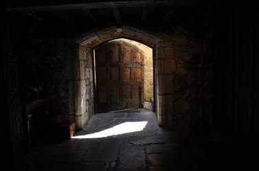 MonsalvatShoot doors3 by gin7gin8 by Georgina-Gibson