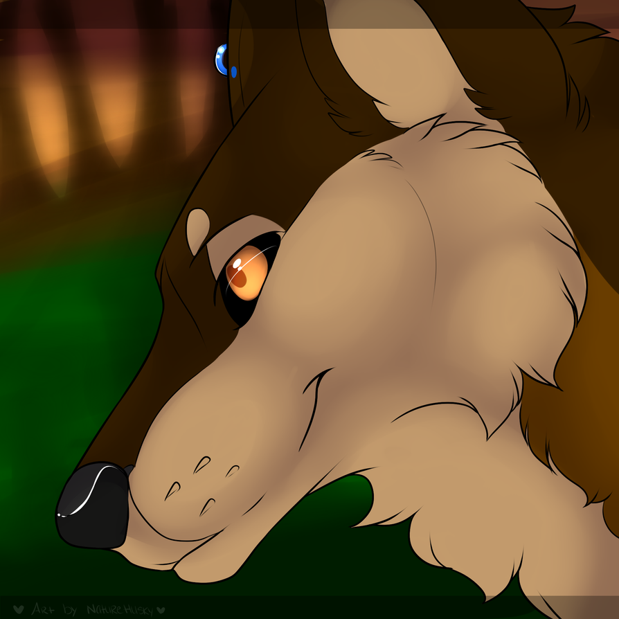 Night Stalker by Zevimaru